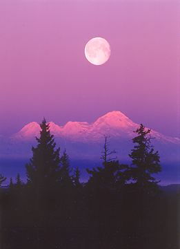moon 5d17