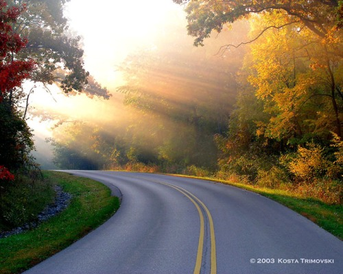 SunRays bend in road